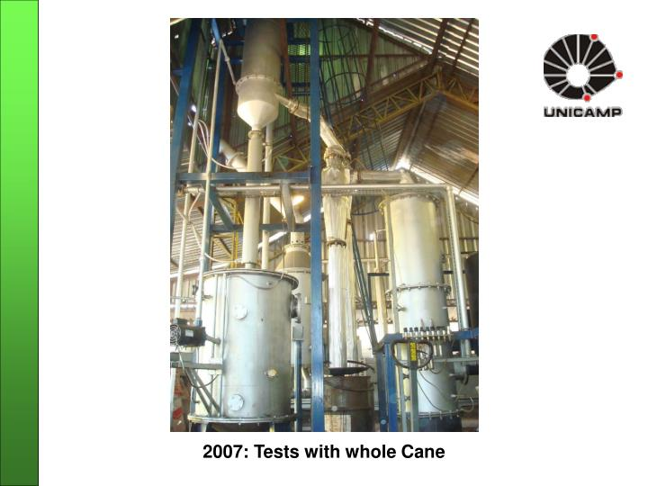 2007: Tests with whole Cane