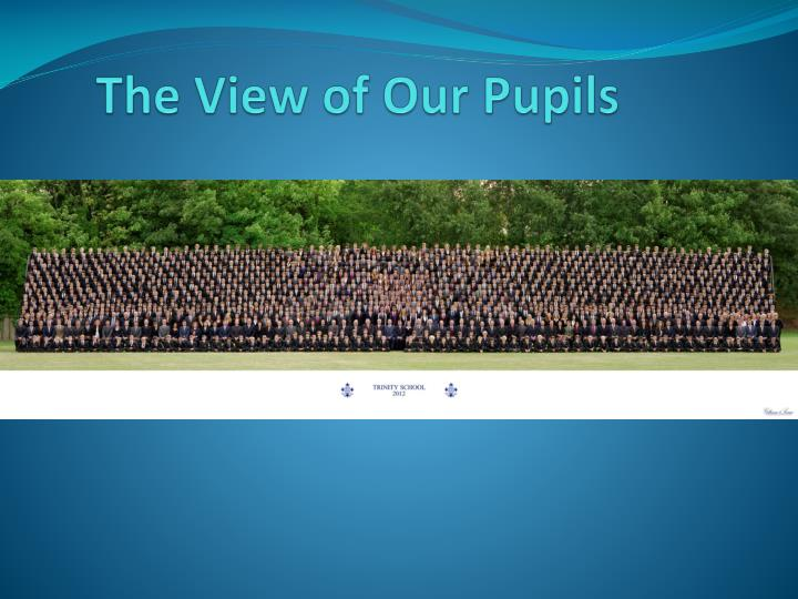 The View of Our Pupils