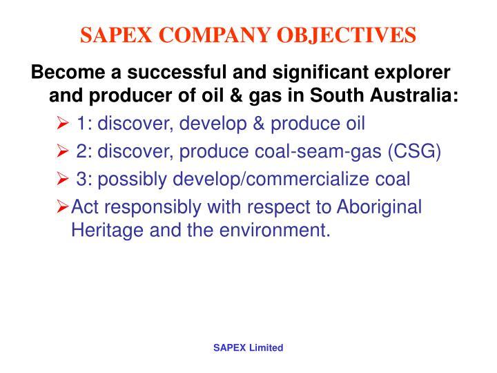 Sapex company objectives