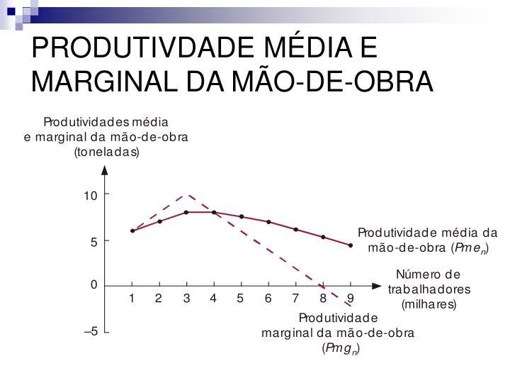 PRODUTIVDADE MÉDIA E MARGINAL DA MÃO-DE-OBRA