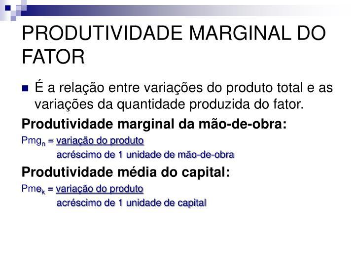 PRODUTIVIDADE MARGINAL DO FATOR
