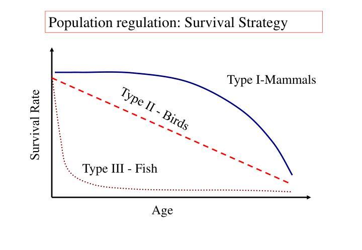 Population regulation: Survival Strategy