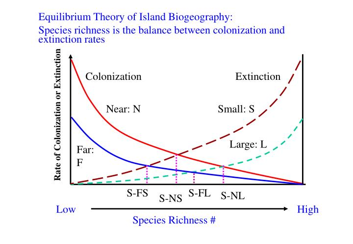Equilibrium Theory of Island Biogeography: