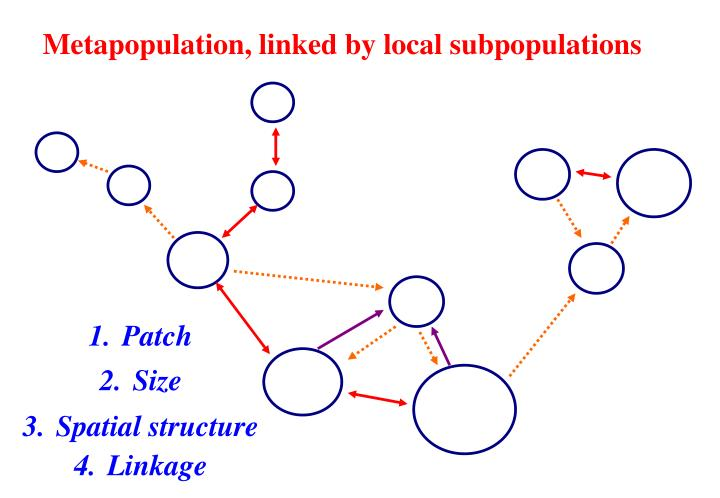 Metapopulation, linked by local subpopulations