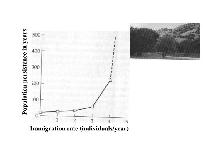 Population persistence in years