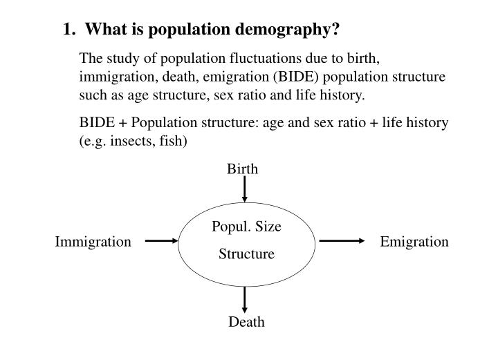 1.  What is population demography?