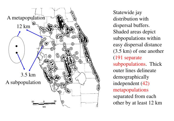 Statewide jay distribution with dispersal buffers.  Shaded areas depict subpopulations within easy dispersal distance (3.5 km) of one another (