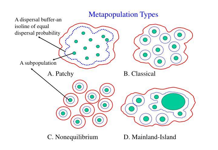 Metapopulation Types