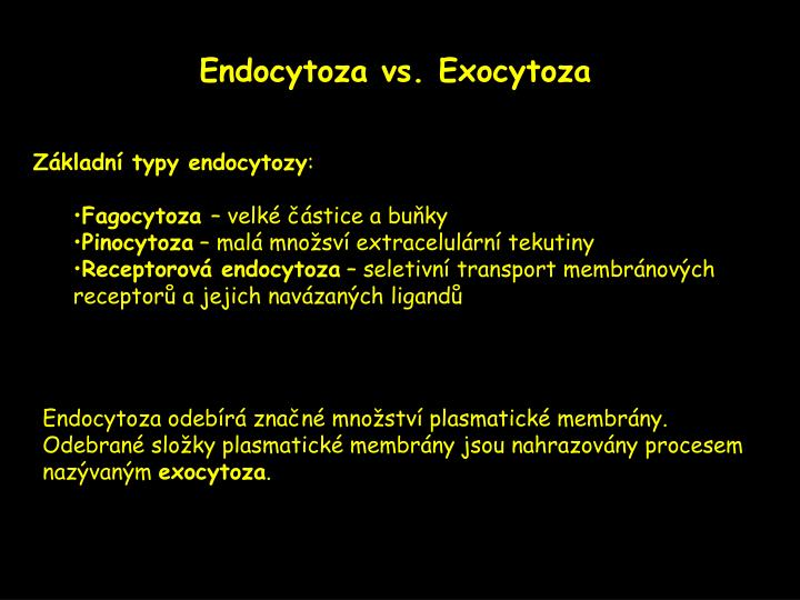 Endocytoza vs. Exocytoza