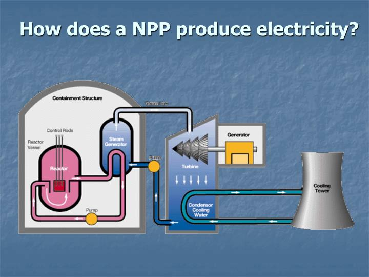 How does a NPP produce electricity?