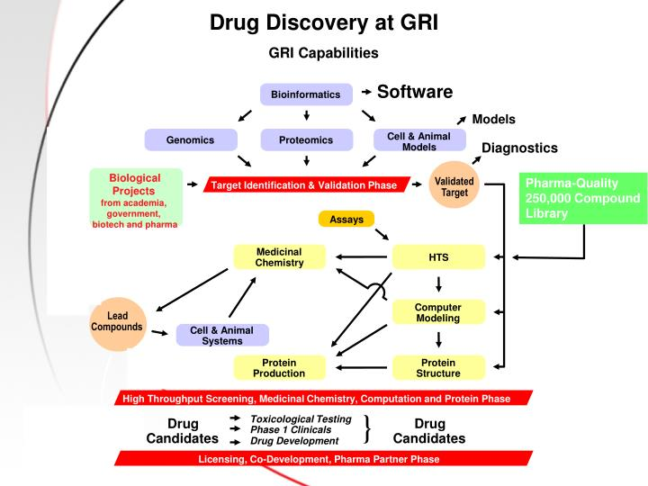 Drug Discovery at GRI