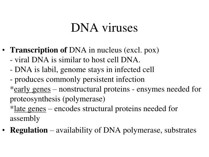 DNA viruses