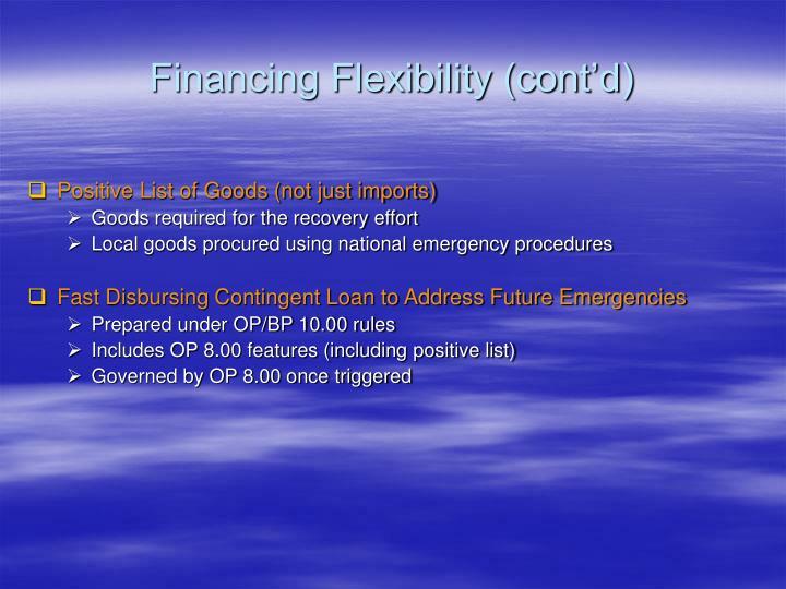 Financing Flexibility (cont'd)
