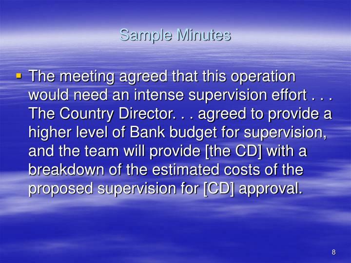 Sample Minutes