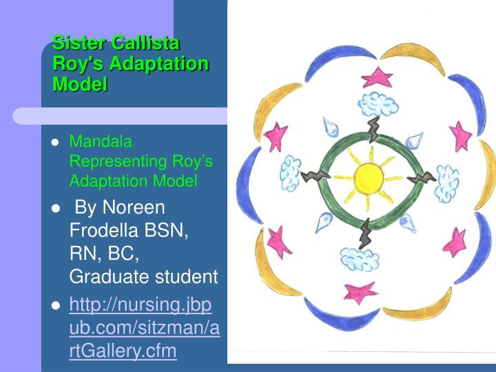 sister callista roy adaptation theory