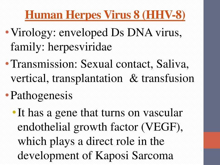 Human Herpes