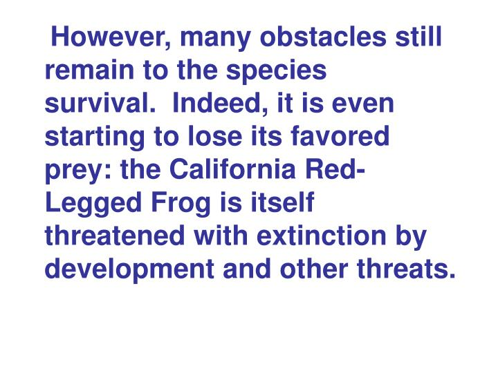 However, many obstacles still remain to the species survival. Indeed, it is even starting to lose its favored prey: the California Red-Legged Frog is itself threatened with extinction by development and other threats.