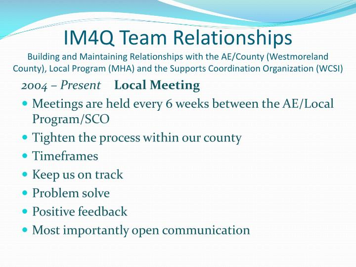 IM4Q Team Relationships