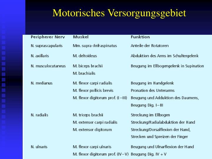 PPT - MRT bei Plexus brachialis Läsionen PowerPoint Presentation ...