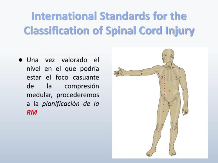 International Standards for the Classification of Spinal Cord Injury