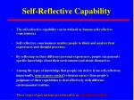 self reflective capability