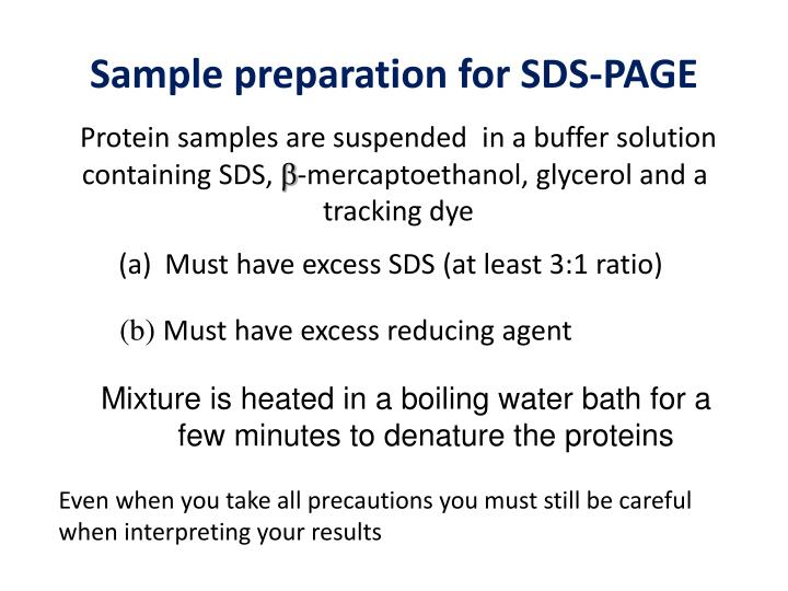 Mixture is heated in a boiling water bath for a few minutes to denature the proteins