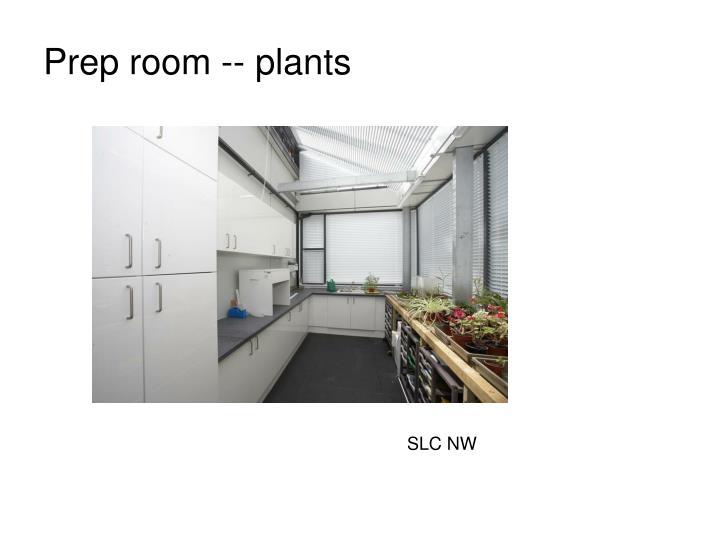 Prep room -- plants