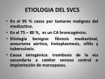 etiologia del svcs