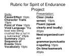 rubric for spirit of endurance project