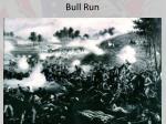 bull run1