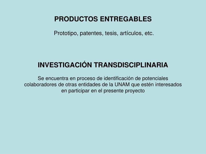 PRODUCTOS ENTREGABLES