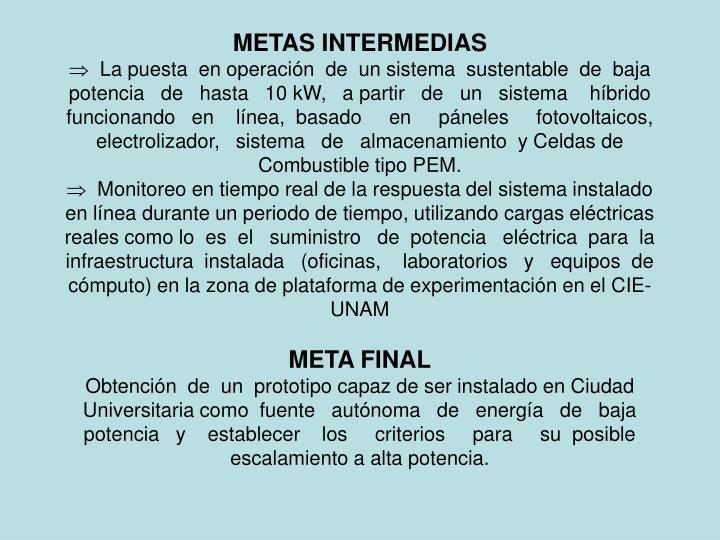 METAS INTERMEDIAS