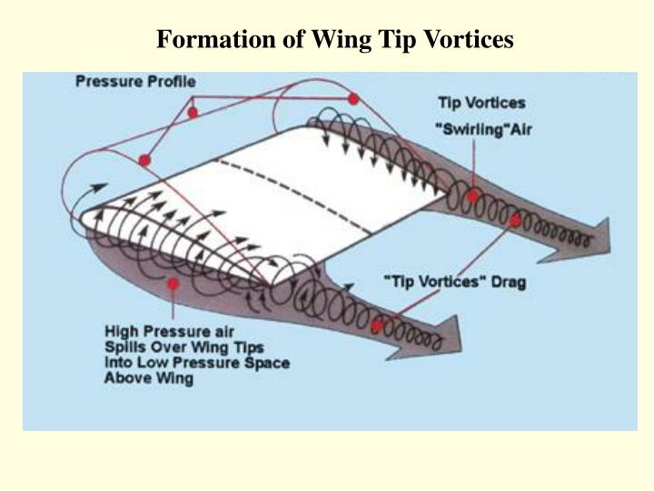 Formation of wing tip vortices