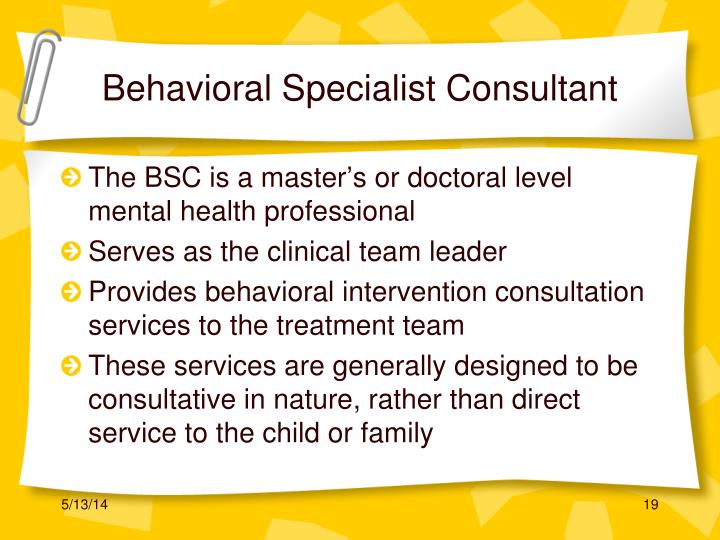 Behavioral Specialist Consultant