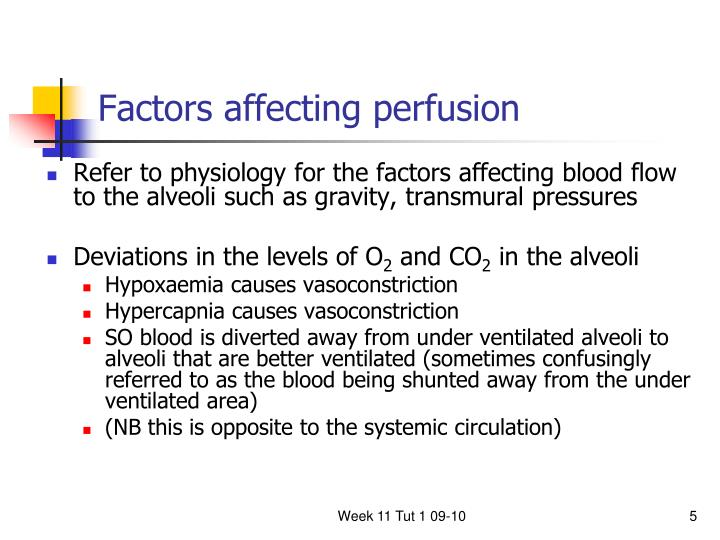 Factors affecting perfusion