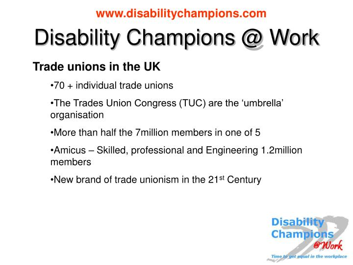 Disability champions @ work1