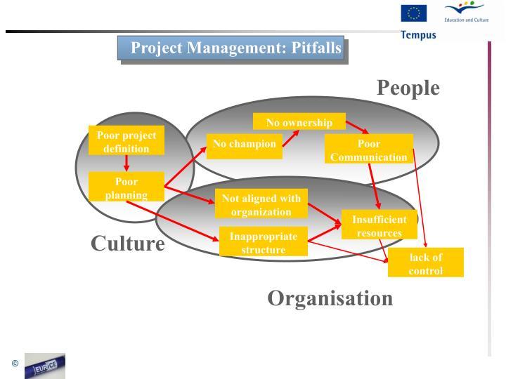 Project Management: Pitfalls