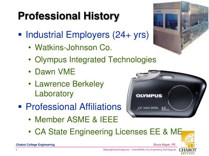 Professional History