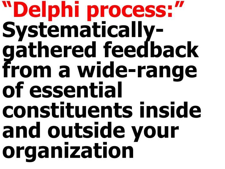 """""""Delphi process:"""""""