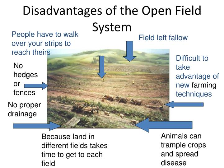 Disadvantages of the Open Field System