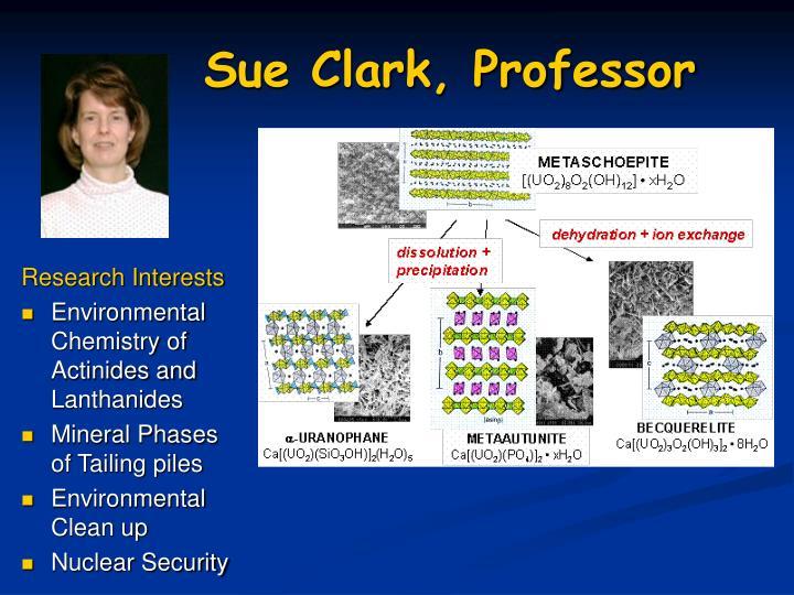 Sue Clark, Professor