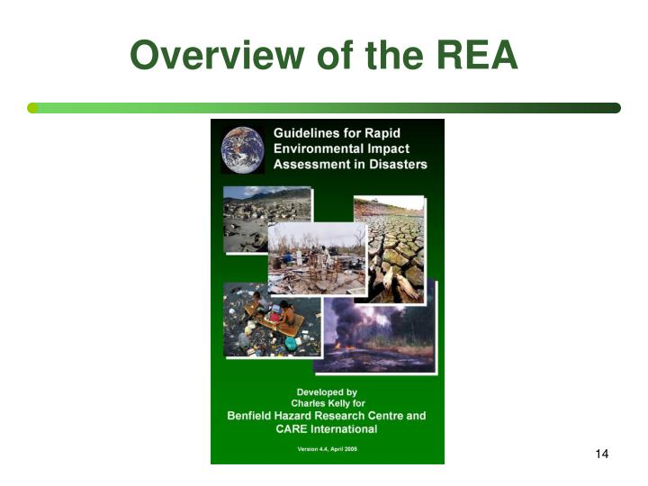 Overview of the REA