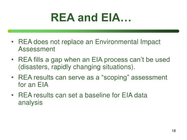 REA and EIA…