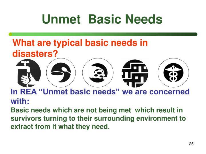 Unmet  Basic Needs