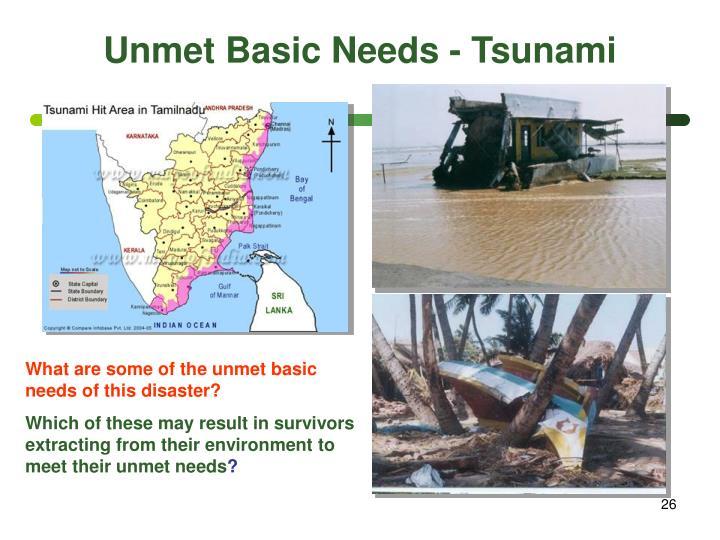 Unmet Basic Needs - Tsunami