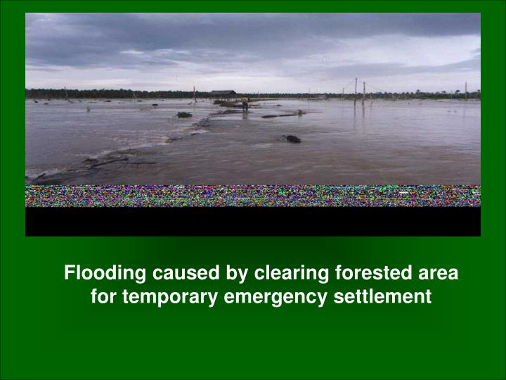 Flooding caused by clearing forested area