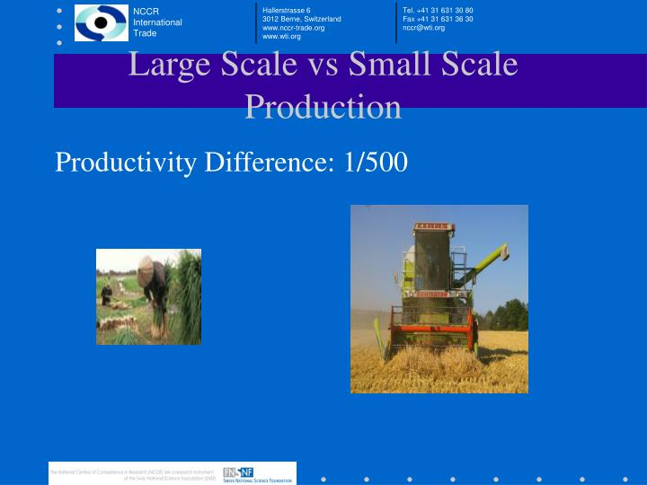 Large Scale vs Small Scale Production