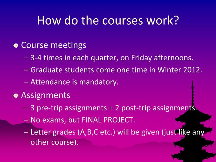 How do the courses work?