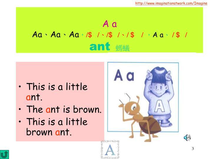 A a aa aa aa a a ant