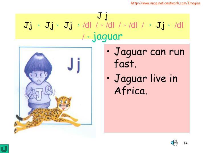 Jaguar can run fast.